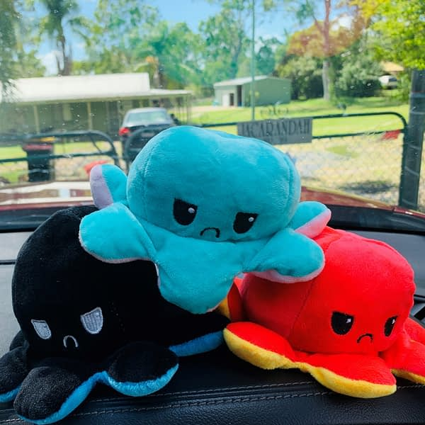 3 mood octopus on the dash of the car